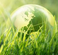 Steeds meer bedrijven omarmen hergebruik voor een circulaire economie